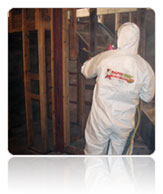 Technology Services - soda blasting