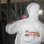 mold test remediation