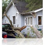 Services Storm Repair
